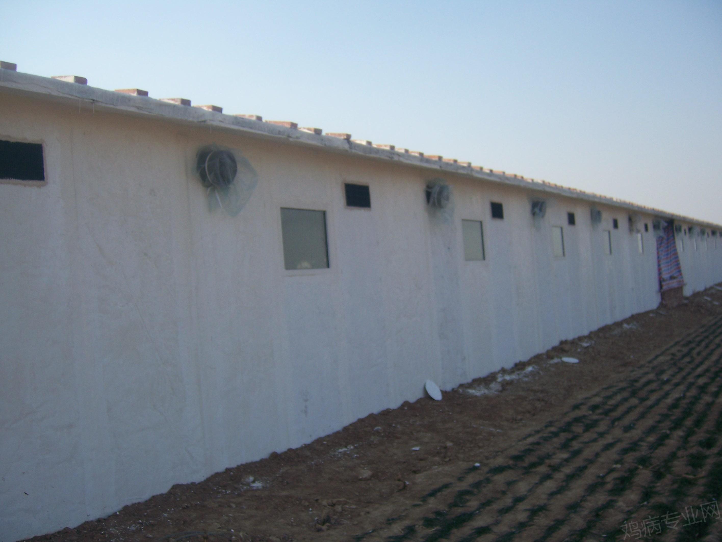 1万元简单装修房子