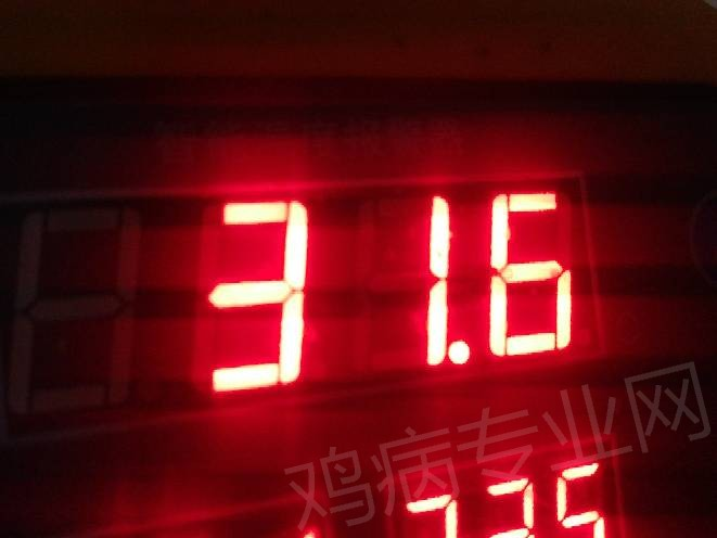 102432wa3ooeavu3zoveww.jpg