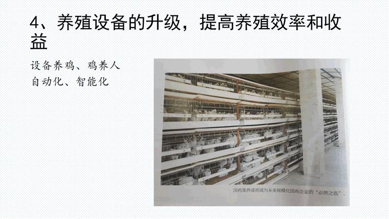 三十年国鸡产业再升级与新形势下战略转移-定版_25.png