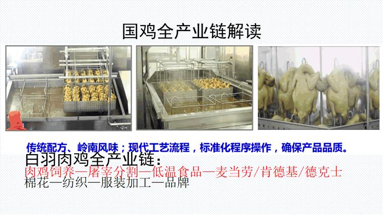 三十年国鸡产业再升级与新形势下战略转移-定版_38.png