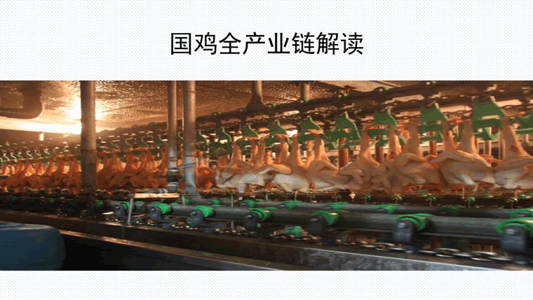 三十年国鸡产业再升级与新形势下战略转移-定版_37.png