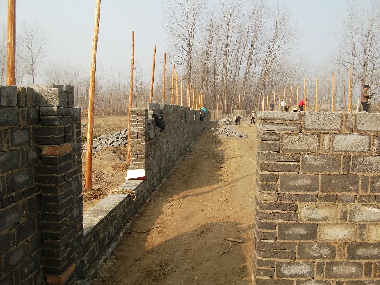 建设 鸡舍/2011/2/21 11:47 上传