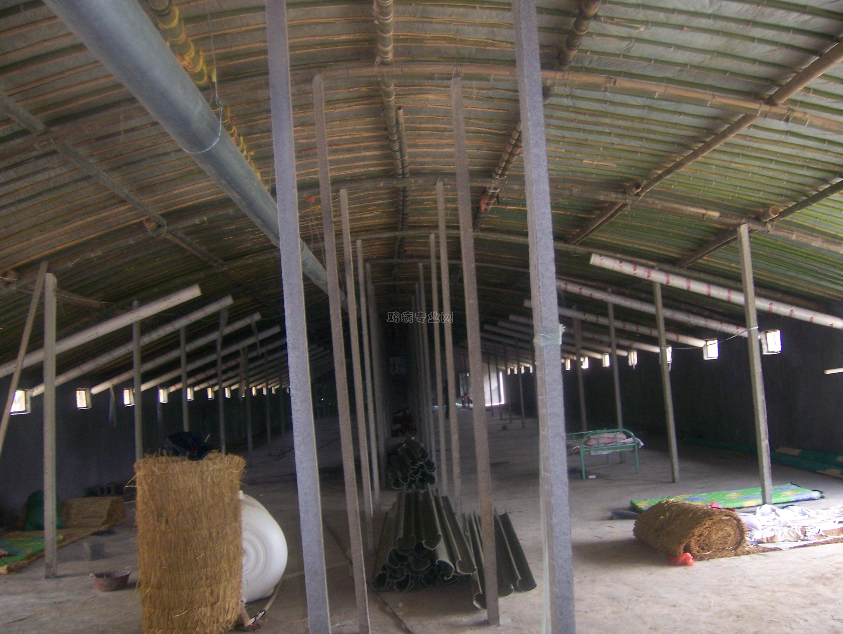 淄博肉鸡笼养鸡棚建设中